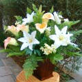 光触媒の花専門店 B-C-Flower
